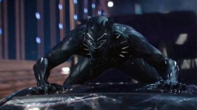 panther3